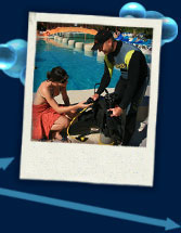 Dive master resort specialist
