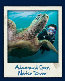 PADI AOWD training