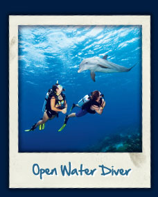 PADI OWD training