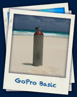 gopro_basic  - Deutsch PADI programm