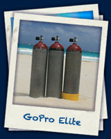 gopro_elite  - Deutsch PADI programm